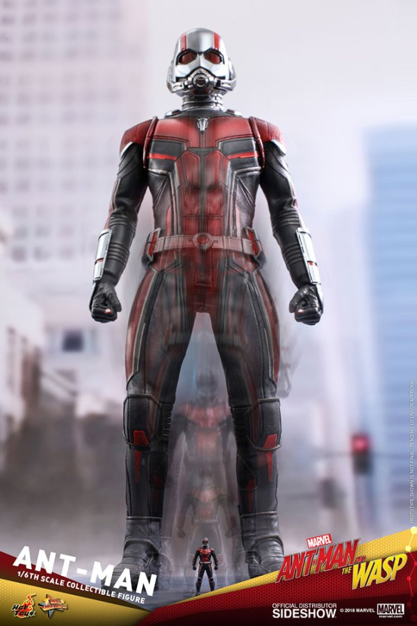 marvel-ant-man-sixth-scale-figure-hot-toys-903697-17