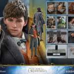 fantastic-beasts-the-crimes-of-grindwald-newt-scamander-sixth-scale-figure-hot-toys-904194-22