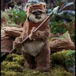 hot-toys-wicket-sixth-scale-figure-star-wars-collectibles-mms550-img07