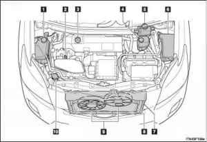 Engine partment  Toyota Prius 2010 Manual  Toyota