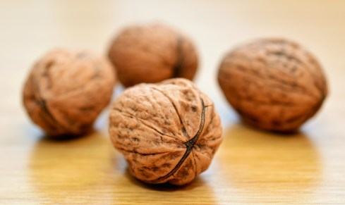 noci frutti secchi vitamine proteine cibo  IN COSA CONSISTE LA DIETA VEGANA?