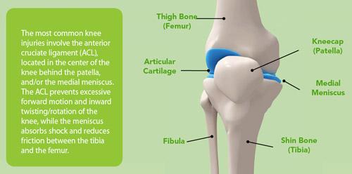 Common Knee Injuries, Uncommon Sense - Carone Chiropractic