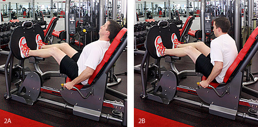 The Leg-Press Exercise - Copyright – Stock Photo / Register Mark