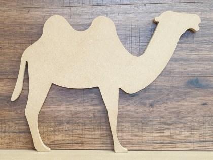 Camel web