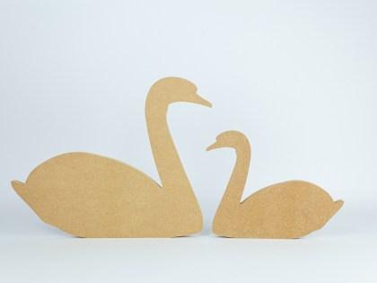 Swan web2