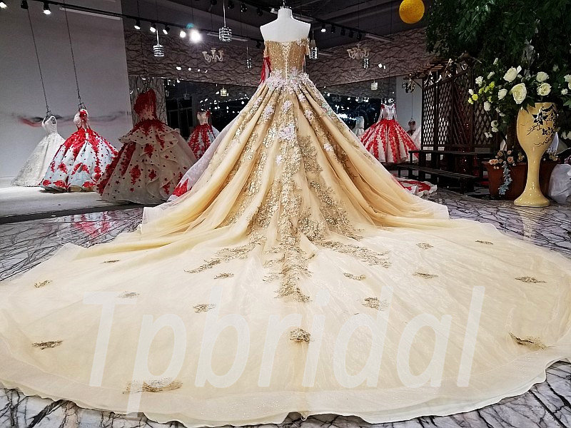 Gold Wedding Dress Plus Size Formal Party Dress Girls