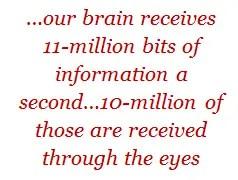 our brain receives