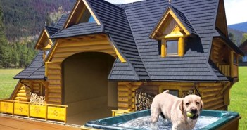 Have you created the ultimate luxury home for your pet?