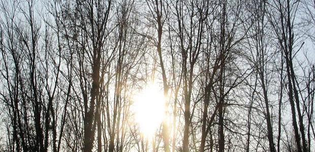 Photo of VREMENSKA KLACKALICA: Danas sunčano i toplo, u ponedeljak novo naoblačenje s kišom i snegom