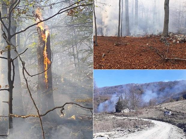 Photo of VELIKI POŽAR KOD ŽAGUBICE: Gori šuma na Beljanici, stihija ide ka selu Suvi Do! (FOTO)