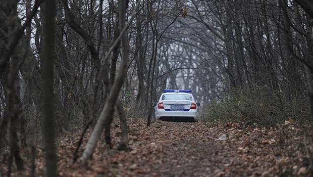 Photo of DOK SE SRBIJA BORI PROTIV VIRUSA: Lokalni šerifi iz Bistrice, za vreme policijskog časa krkaju prasiće!
