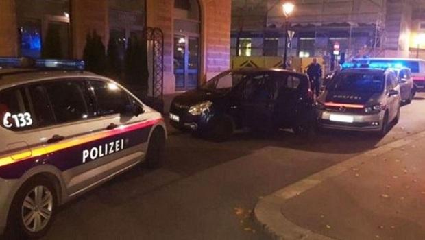 Photo of LUDILO: Petrovčanin bez vozačke dozvole napravio haos u Beču, pa se sakrio u žbunu sa prijateljima