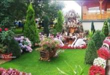 Photo of Konkurs za najlepše dvorište