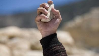 Photo of UHAPŠENI PREVARANTI IZ VITOVNICE: Pokušali da prodaju tuđe imanje, pa vlasnike gađali kamenjem