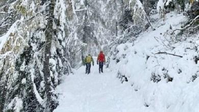 Photo of ZABELELA SE SLOVENIJA: Sneg, kiša i vetar zatvorili puteve na severu zemlje!