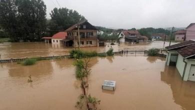 Photo of GLASALI STE, PLIVAJTE: Dok se petrovačka opština opet davi, čelnici opštinske jagnjeće i praseće brigade leče mamurluk nakon noćne pijanke (FOTO)