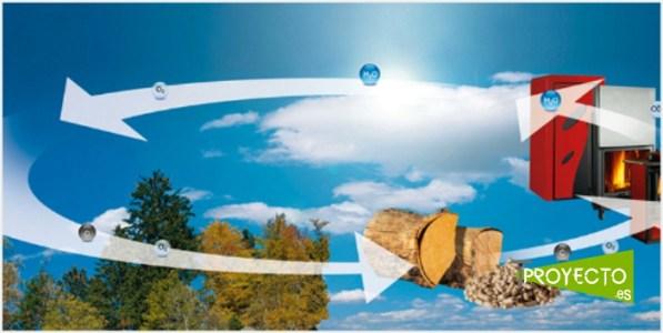Proyectos Biomasa