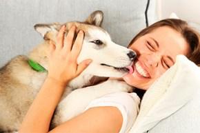 Aprovecha el tiempo en casa y cuida a tu perro