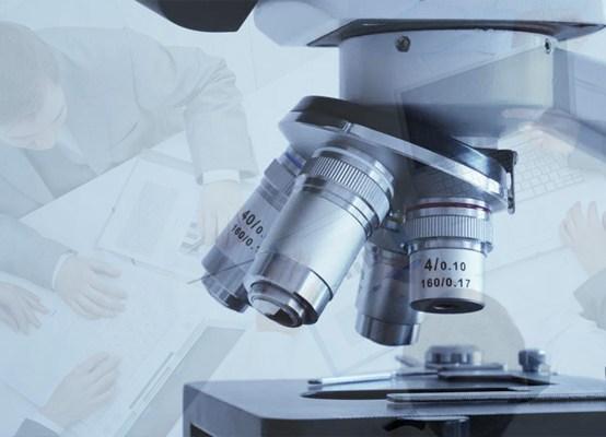 Microterapia Empresarial – taller (2 diciembre)