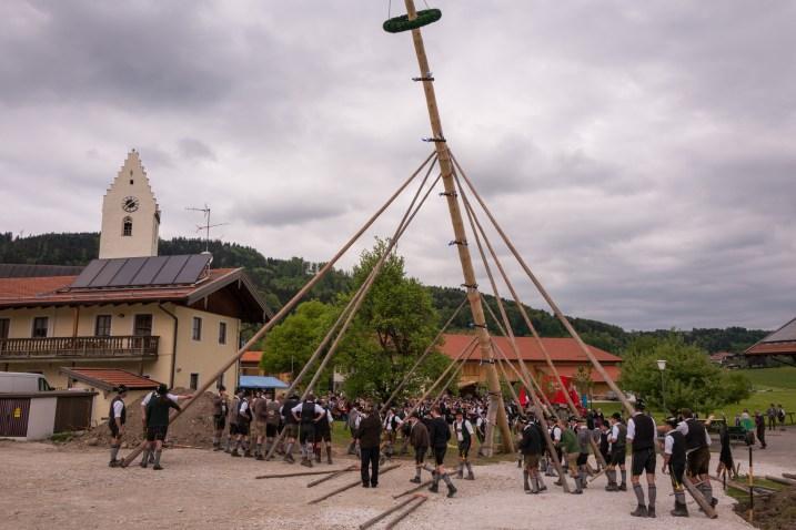 Rossholzen-Maibaum-1300006