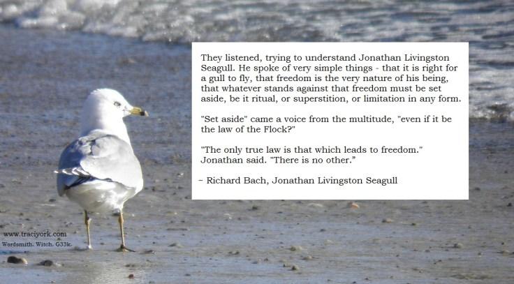 Richard Bach, Jonathan quote