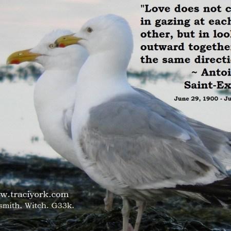 Antoine de Saint-Exupery quote with seagulls