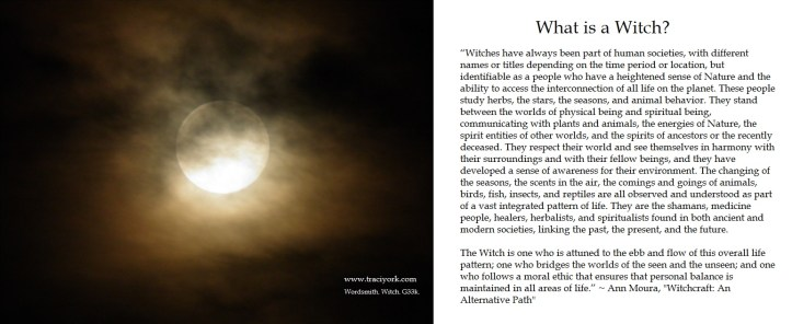 What is a witch quote by Ann Moura