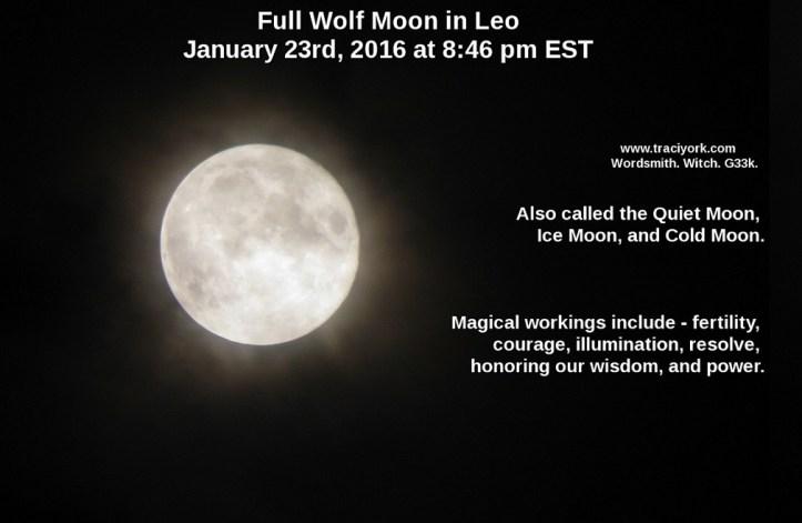 WW – Full Wolf Moon in Leo - Traci York