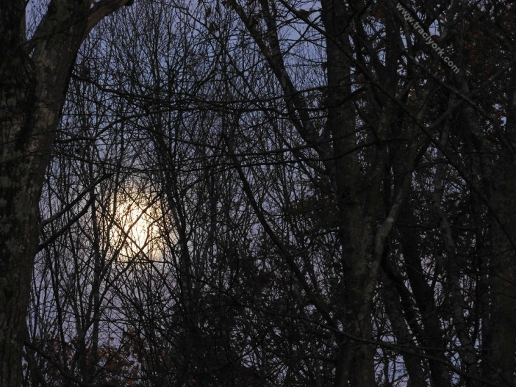 Moon rise, two nights until full