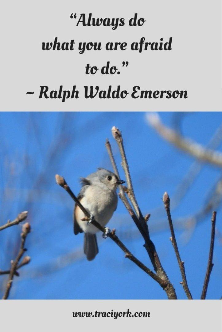 Quote Challenge Week 2 Ralph Waldo Emerson