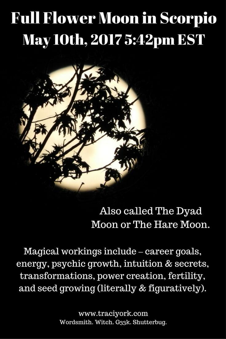 Full Flower Moon in Scorpio