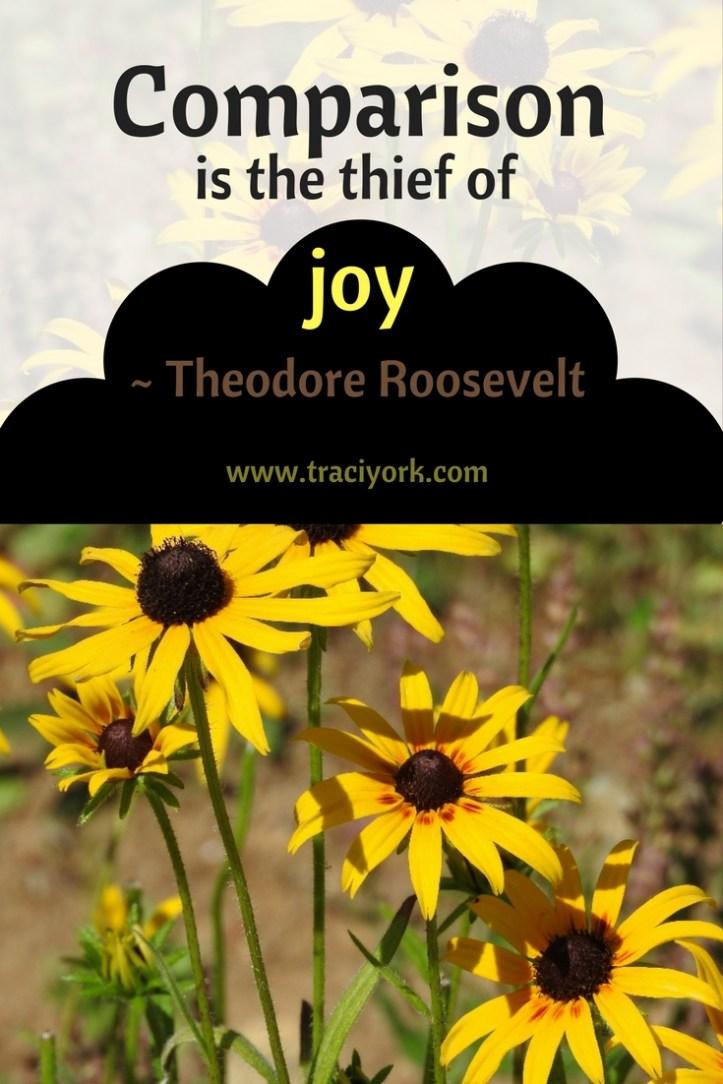 Quote Challenge Week 5 Theodore Roosevelt Quote