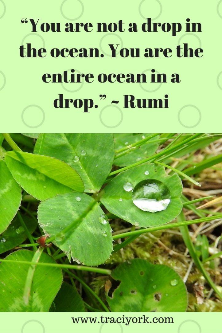 Quote Challenge Week 1 Rumi