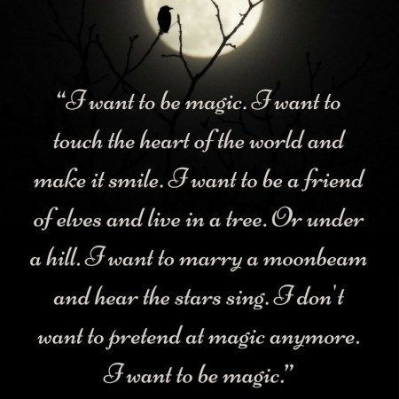 Charles de Lint I want to be magic Quote