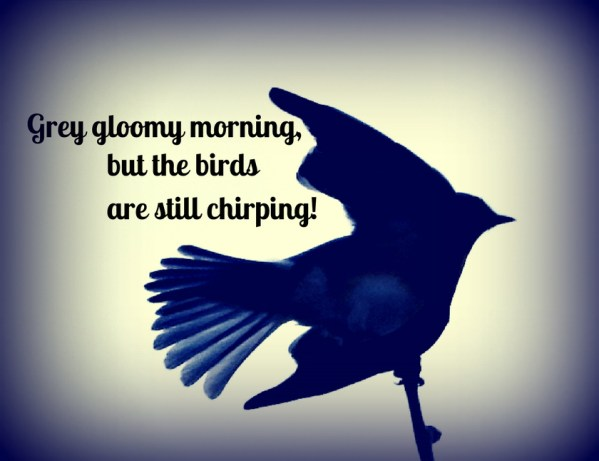 birds are still chirping