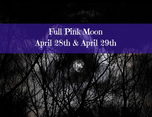 Full Pink Moon, April 28th and April 29th