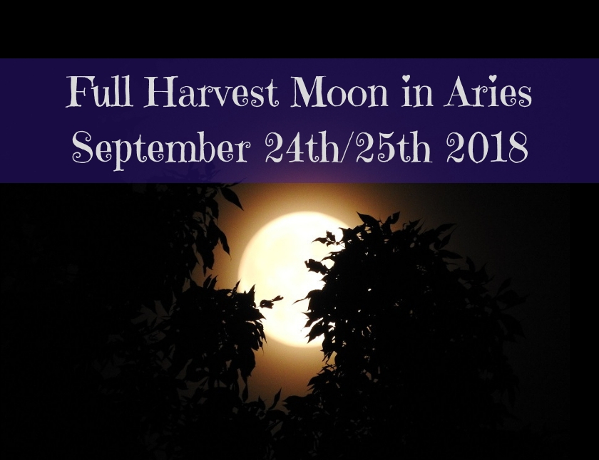 Full Harvest Moon in Aries blog thumbnail