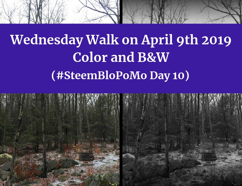 Wednesday Walk April 9th 2019 in color and BW blog thumbnail