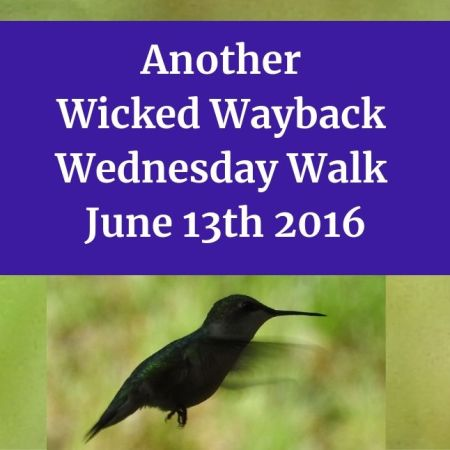 Another Wicked Wayback Wednesday Walk from June 13th 2016 blog thumbnail