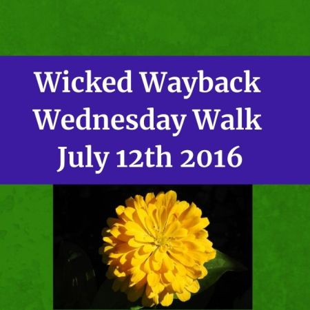 Wicked Wayback Wednesday Walk from July 12th 2016 blog thumbnail