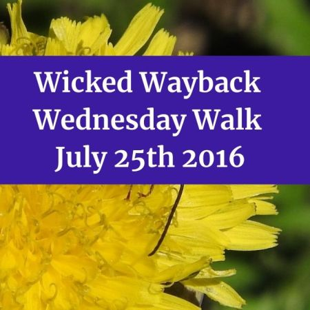 Wicked Wayback Wednesday Walk from July 25th 2016