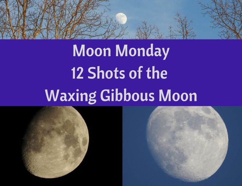 Moon Monday - 12 Shots of the Waxing Gibbous Moon blog thumbnail
