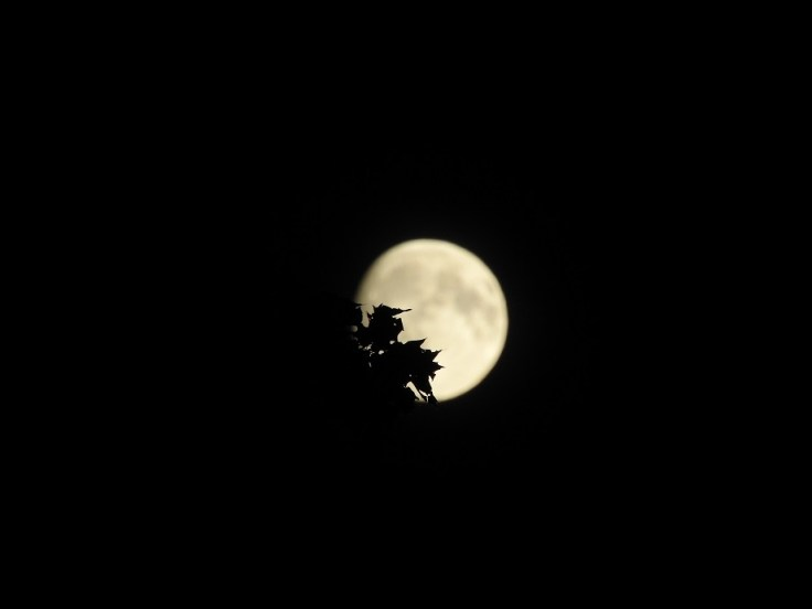 Two Almost Full Moons
