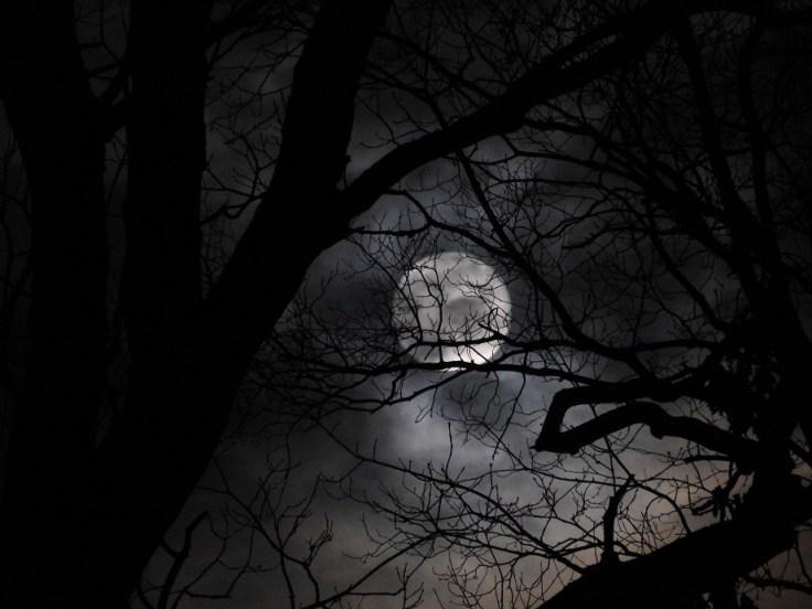 January 10th Full Wolf Moon