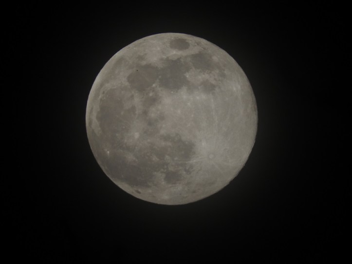 More pics and a quick video of the Full Pink Super Moon