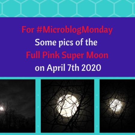 MicroblogMonday - Some pics of the Full Pink Super Moon on April 7th 2020 blog thumbnail