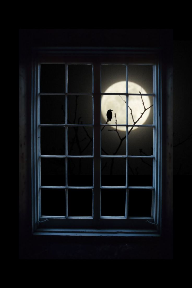 My crow-moon photo with png freeware window