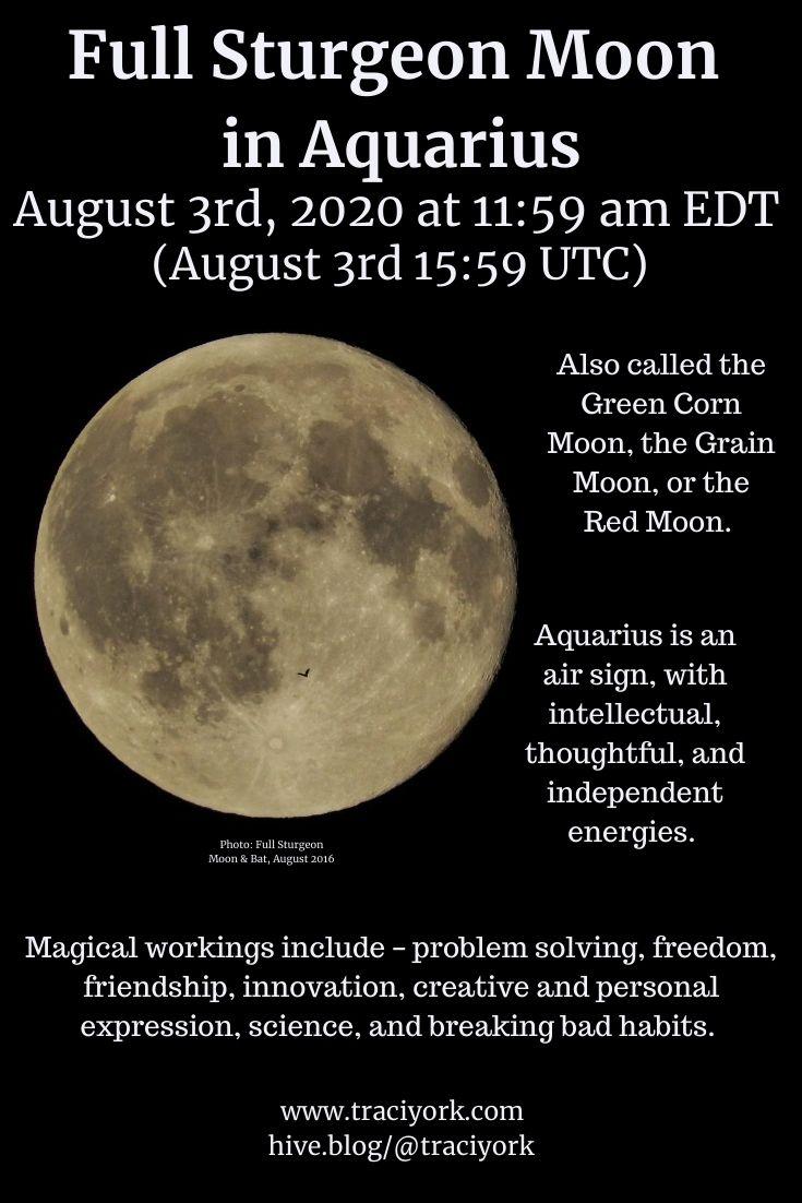 Full Moon in Aquarius August 3 2020 Pinterest size