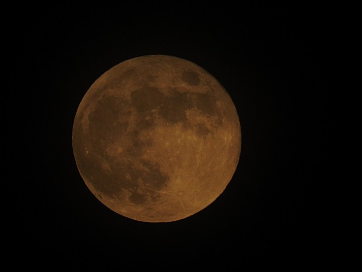 3 June 5th 2020 Full Honey Moon