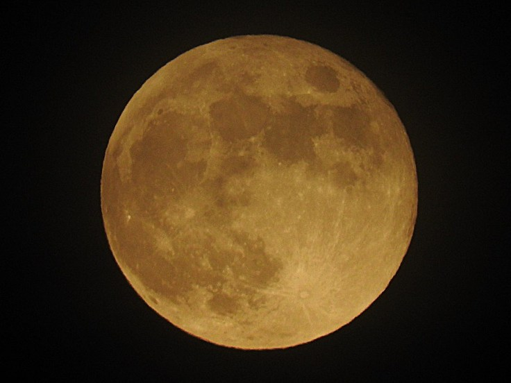 4 June 5th 2020 Full Honey Moon